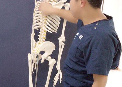 骨盤矯正の重要性