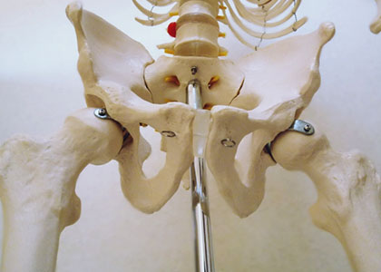 「筋肉」「関節」の視点から見る整体01