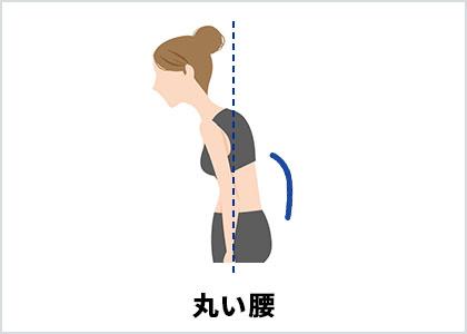 丸い腰(イラスト)